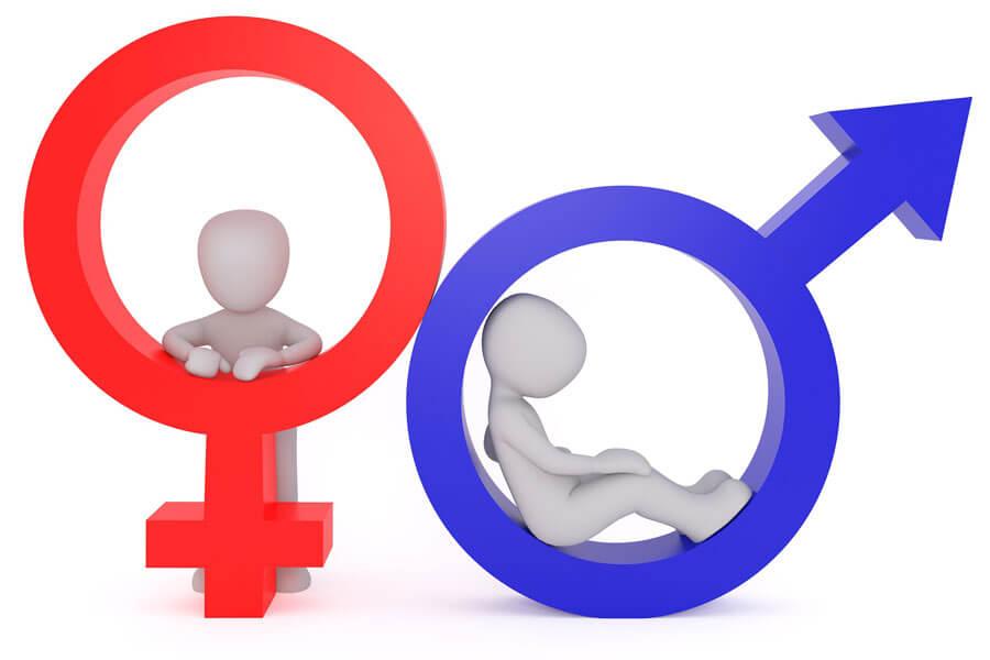 gendergerechte sprache technische redaktion
